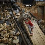 کمک های مردمی به زلزله زدگان در حساب سلبریتی ها سود میخورد