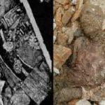 کشف مومیایی در شهر ری و توضیحات رئیس پزشکی قانونی استان تهران