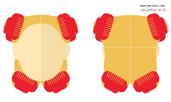 مرحله 3 تقسیم مو