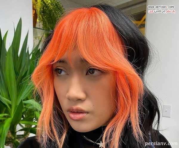 چتری مو رنگی